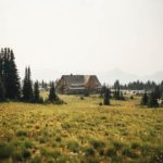 lonely house on grassy meadow